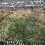 庭しごと -掃除編6-