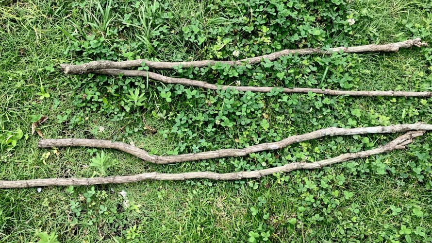 庭しごと -畑編7 キュウリの支柱をDIY-